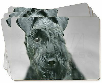 Kerry Blue Terrier Dog Picture Placemats in Gift Box, AD-KB1P