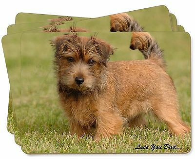 Norwich/Norfolk Terrier 'Love You Dad' Picture Placemats in Gift Box, DAD-80P