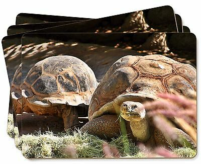 Giant Tortoise Picture Placemats in Gift Box, AR-T15P