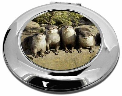 Cute Otters Make-Up Round Compact Mirror Christmas Gift, AO-6CMR