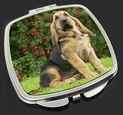 Bloodhound Dog Make-Up Compact Mirror Stocking Filler Gift, AD-BL1CM