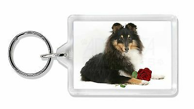 Tri-Col Sheltie with Red Rose Photo Keyring Animal Gift, AD-SE1RK
