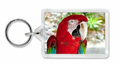 Green Winged Red Macaw Parrot Photo Keyring Animal Gift, AB-PA11K