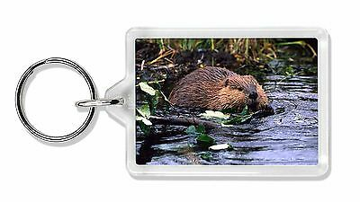 River Beaver Photo Keyring Animal Gift, ABV-1K