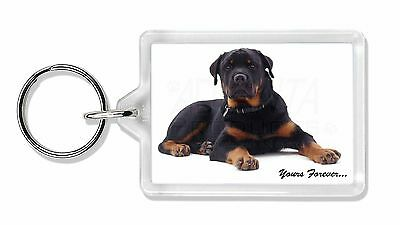 Rotweiler Dog 'Yours Forever' Photo Keyring Animal Gift, AD-RW5K