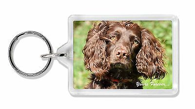 Chocolate Spaniel 'Yours Forever' Photo Keyring Animal Gift, AD-SC4yK