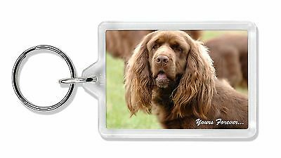 Sussex Spaniel 'Yours Forever' Photo Keyring Animal Gift, AD-SUS1yK