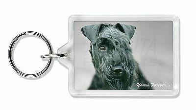 Kerry Blue Terrier 'Yours Forever' Photo Keyring Animal Gift, AD-KB1yK