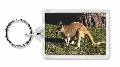 Kangaroo Photo Keyring Animal Gift, AK-2K