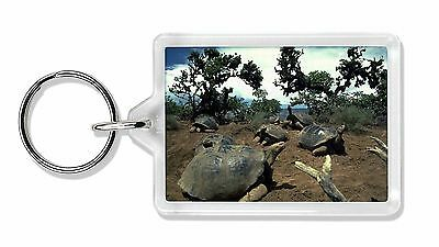 Galapagos Tortoise Photo Keyring Animal Gift, AR-T11K