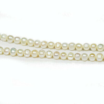 Strand Of 50+ Pale Cream Freshwater Pearl 6-7mm Round Potato Beads FP1706-1