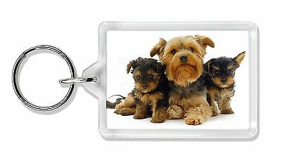 Yorkshire Terrier Dogs Photo Keyring Animal Gift, AD-Y3K