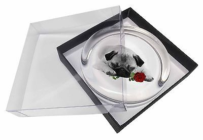 Pug (B+W Photo) with Red Rose Glass Paperweight in Gift Box Christma, AD-P92R2PW