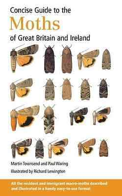 Concise Guide to the Moths of Great Britain and Ireland - Paperback NEW Martin T