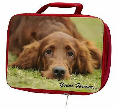 Red Setter Dog 'Yours Forever' Insulated Red Lunch Box, AD-RS2yLBR