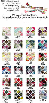 DMC Coloris Floss ~ You Choose Individual Skeins from all 24 Colors #4500 - 4523