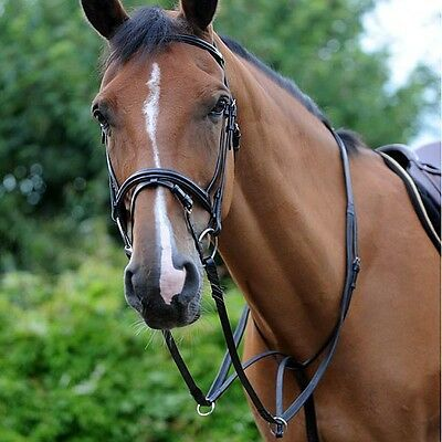 JOHN WHITAKER LEATHER RUNNING MARTINGALE horse training aid