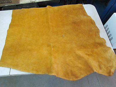 """Native American Dark Home Tanned Amazing Moose Hide Soft 36"""" In By 30"""" In"""