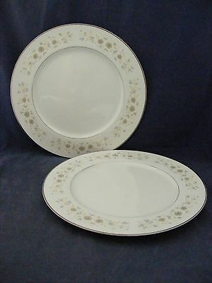 """2 Carlton Adnover 10 5/8"""" Dinner Plates Mint Condition"""