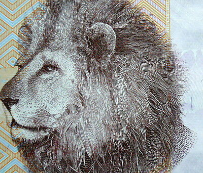 Lion on Paper Money Tanzania 2000 Shilling 2010 Banknote African currency mint