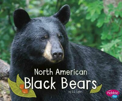 North American Black Bears by G.G. Lake (English) Library Binding Book Free Ship