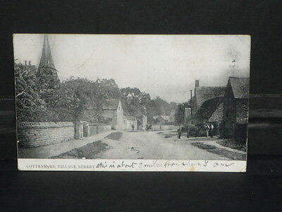 Leicestershire - Cottesmore - Village street - 1905
