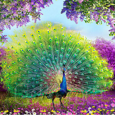DIY 5D Diamond Peacock Embroidery Painting Flower Cross Stitch Home Decoration