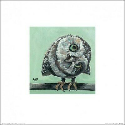 Eulen - Little Owl, Louise Brown Poster Kunstdruck Bild (30x30cm) #99081