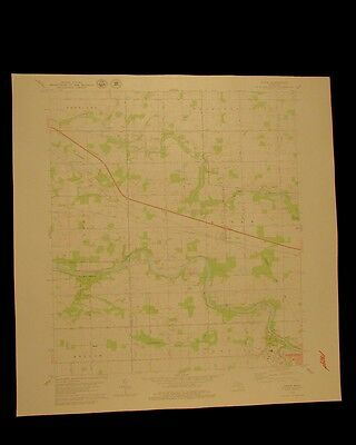 Eagle Michigan vintage 1979 original USGS Topographical chart
