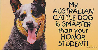 My AUSTRALIAN CATTLE DOG is SMARTER than your HONOR STUDENT car/ MAGNET 4X8