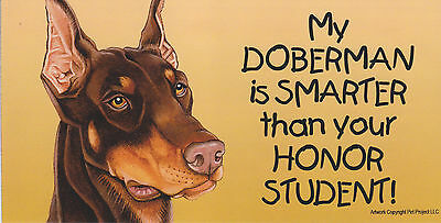 My DOBERMAN (brown) is SMARTER than your HONOR STUDENT car/fridge MAGNET 4X8