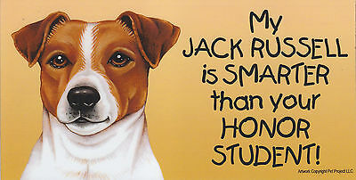 My JACK RUSSELL is SMARTER than your HONOR STUDENT car/fridge MAGNET 4X8 terrier