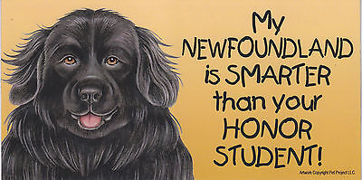 My NEWFOUNDLAND is SMARTER than your HONOR STUDENT car/fridge MAGNET 4X8