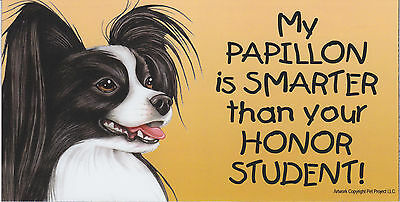 My PAPILLON (black & white) is SMARTER than your HONOR STUDENT car MAGNET 4X8