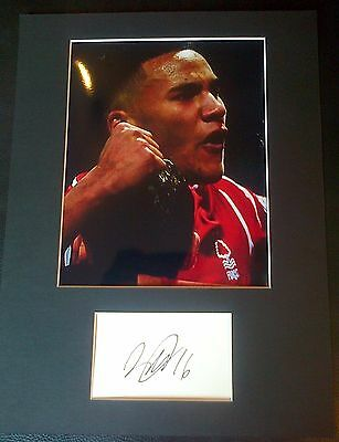 Jamaal Lascelles Authentic Hand Signed Nottingham Forest Display AFTAL COA