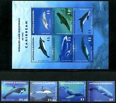 Antigua & Barbuda, MNH, Marine Life, Whales & Dolphins of the Caribbean. x7622