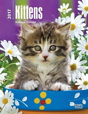 Kittens 2017 WEEKLY ENGAGEMENT CALENDAR/PLANNER Browntrout cats