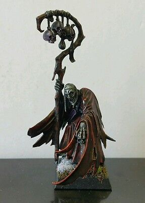 Vampire Counts Necromancer well painted plastic model AOS Age of Sigmar