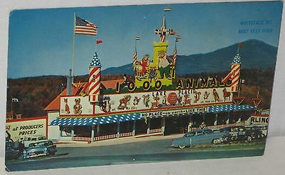 "1950's ""1,000 Animals Lake Placid"" Attraction Postcard #Bar-605 Unsigned"