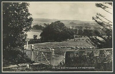 (Near) Worthing Sussex On The South Downs c1930s Valentine Real Photo Postcard