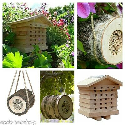 Wildlife World Solitary Bees - Choice Of Pollinating Bee Log OR Bee Hive