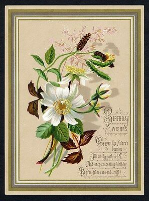 BIRTHDAY Victorian Greeting Card 1880's - Flowers - Poem and Gold Border