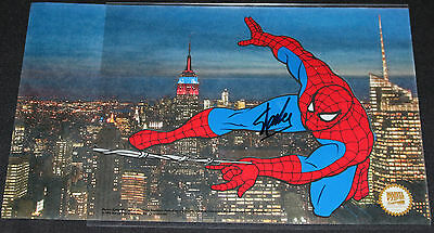 Spider-Man Collector's Edition Animation Cel w NYC Photo 1998 Signed by Stan Lee
