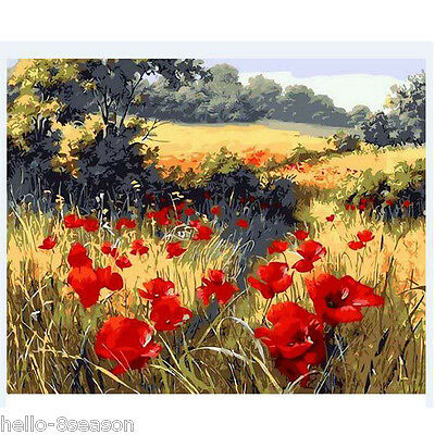 Red Flower Oil Painting By Numbers Canvas Painting Wall Decor 40x50cm