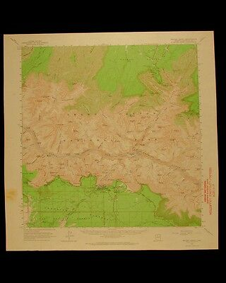 Bright Angel Arizona vintage 1964 original USGS Topographical chart