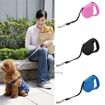 5M Pet Dog Cat Puppy Automatic Retractable Traction Rope Walking Lead Leash V1NF