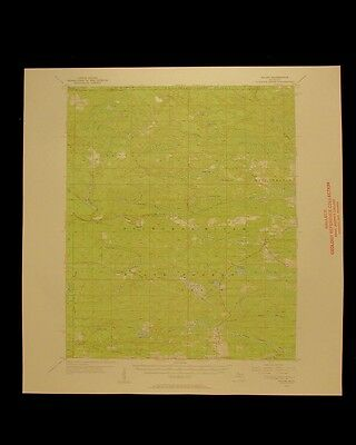 Ralph Michigan vintage 1957 original USGS Topographical chart
