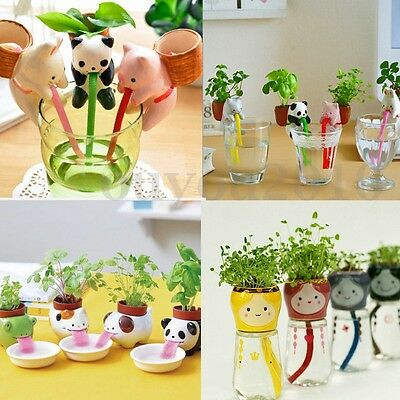 Animal Tougue Ceramic Cultivation Peropon Drinking Self Watering Planter Decor