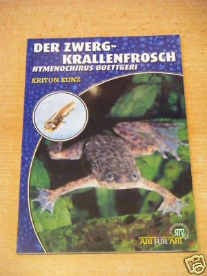 "NTV Art for Art ""Der Zwergkrallenfrosch"""