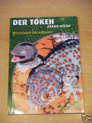 "NTV Art for Art ""Der Tokeh"""